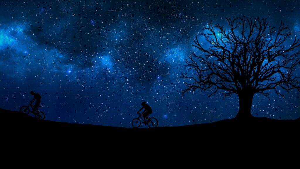 vélo nuit arbe