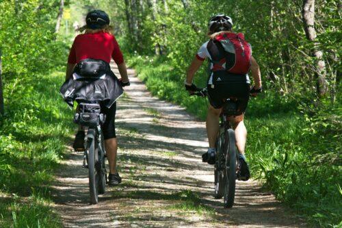 Cyclistes de dos dans un chemin