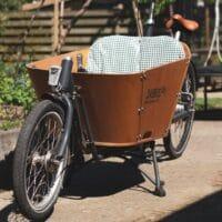 Vélo cargo bois Babboe
