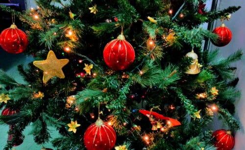Sapin de Noël pour poser les cadeaux des cyclistes